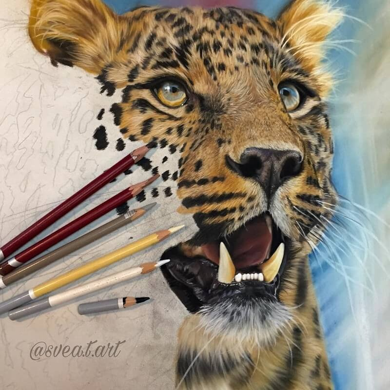 01-Leopard-10-Svea-T-Animal-Portrait-Drawings-and-an-Eye-www-designstack-co