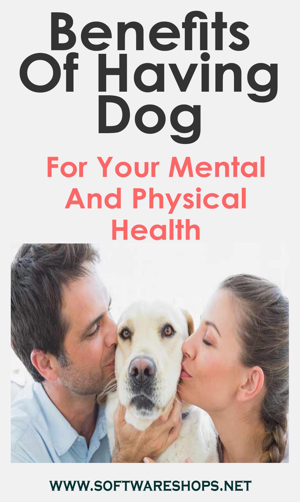 Benefits Of Having Dog