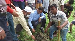 ঝিনাইদহে মুজিববর্ষ উপলক্ষে ৫ হাজার তাল বীজ রোপন শুরু