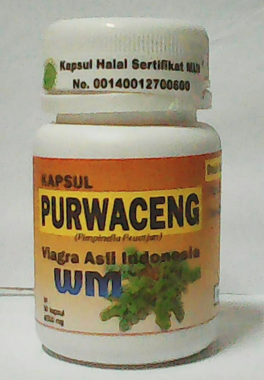 PURWACENG Surabaya harga hemat kemasan Ekonomis - alami herbal surabaya