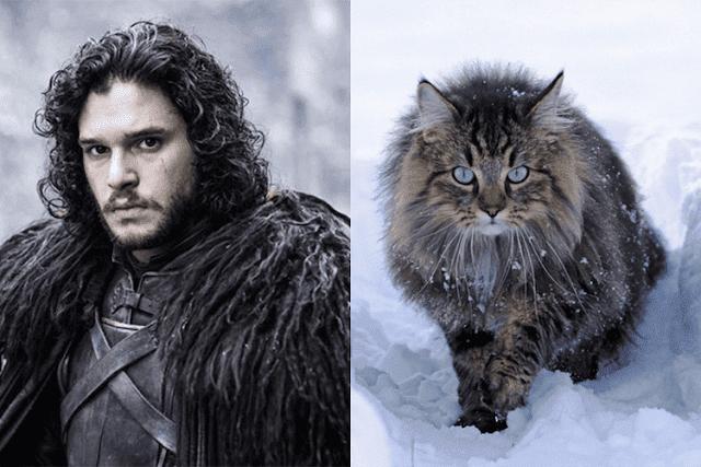 Jon Snow (Pllano Geral)
