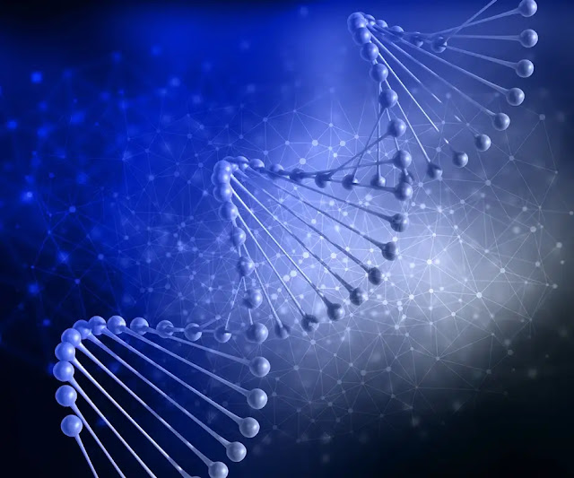 DNA Testing: Things You Need to Know