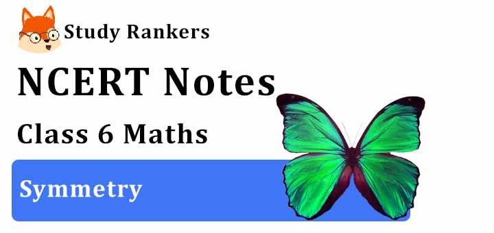 Chapter 13 Symmetry Class 6 Notes Maths
