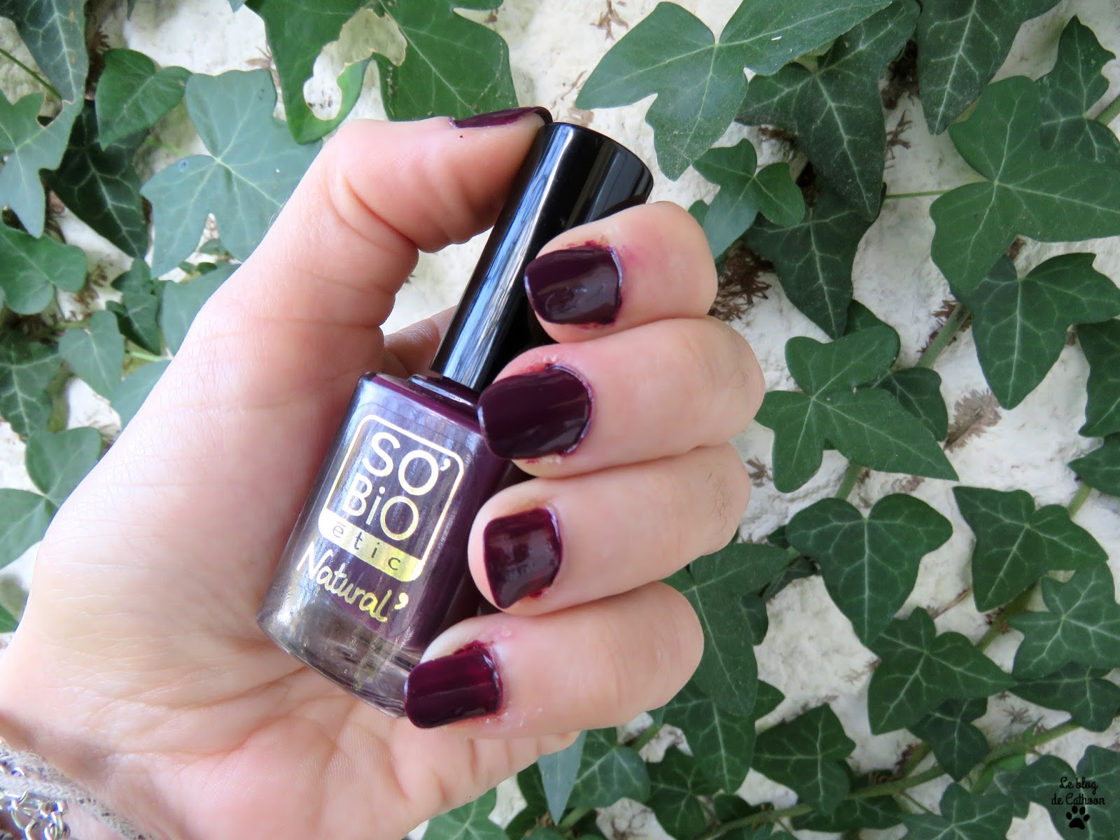 10 Prune Noire - Vernis à Ongles - So'Bio étic Natural'