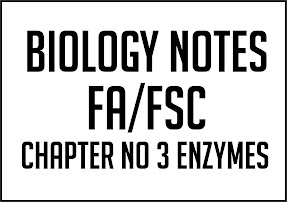 Biology Notes FA FSc Chapter No 3 Enzymes