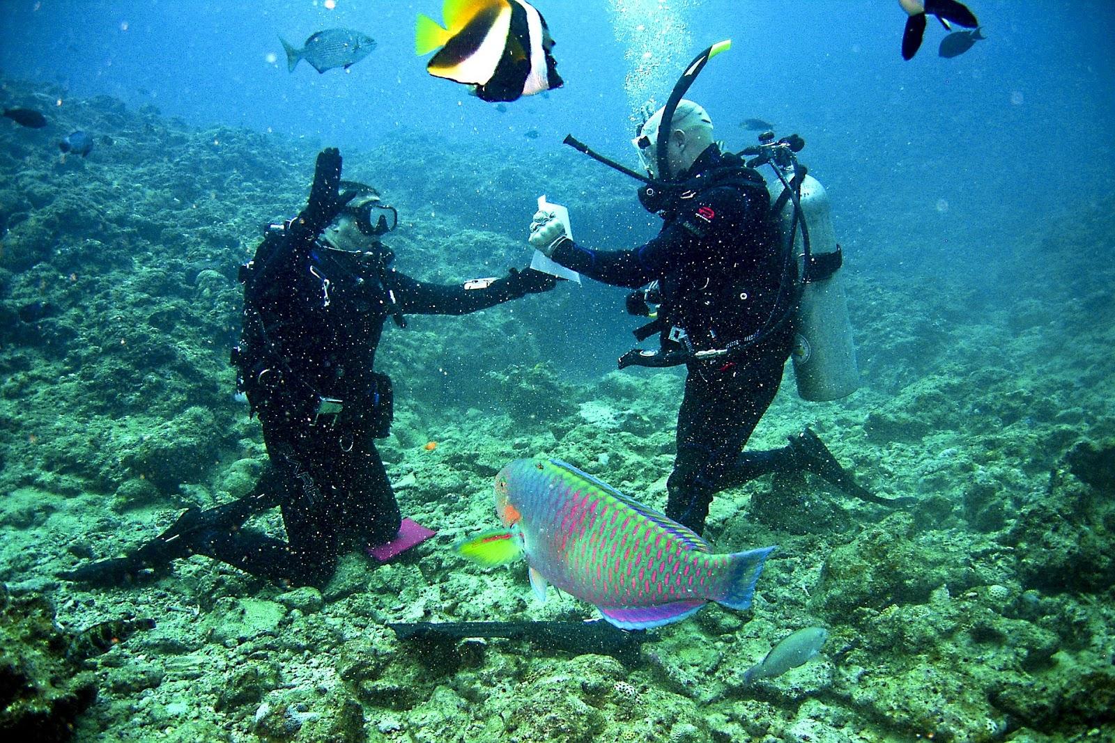 沖繩-潛水-浮潛-宜野灣-推薦-Okinawa-scuba-diving-snorkeling