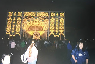 Lights of Winter Center View Epcot Disney World