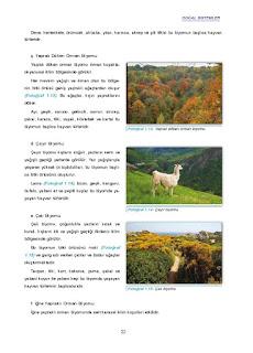 11. Sınıf Coğrafya Ders Kitabı Cevapları Gün Yayınları Sayfa 22