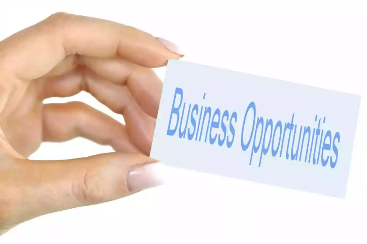 7 New Business Opportunities in 2021