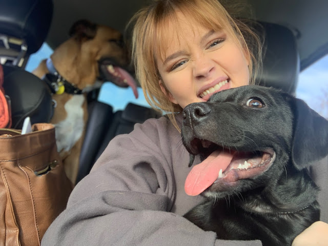 Bringing Indie home - the world's happiest puppy