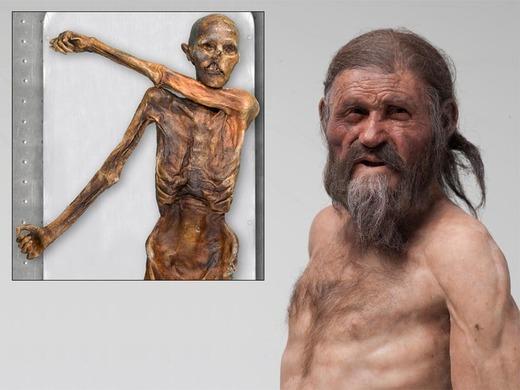 reconstruction de l'Homme des Glaces