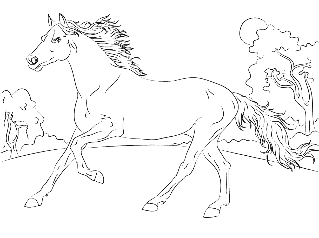 Arabian Horse Coloring Page - Free Printable Coloring Pages for Kids