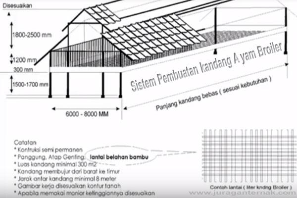 Sistem Pembuatan Kandang Ayam Broiler Juragan Ternak