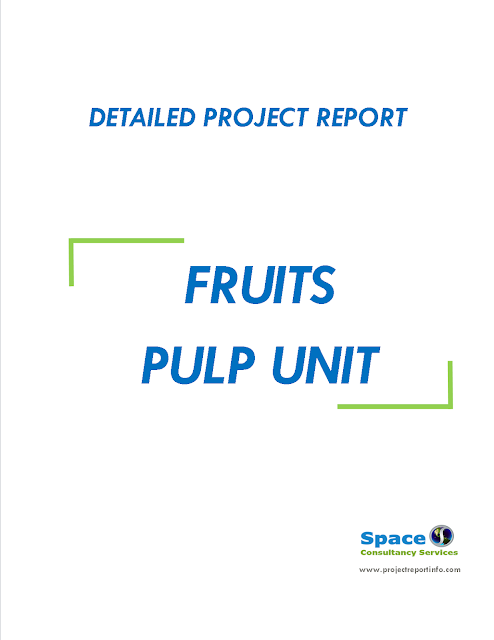 Project Report on Fruits Pulp Unit