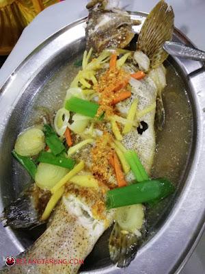 Ikan Kerapu Masak Stim