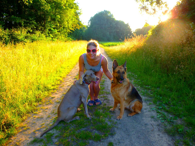 house and pet sitting netherlands