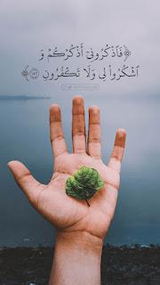 أذكرونى اذكركم، صور من آيات القرآن
