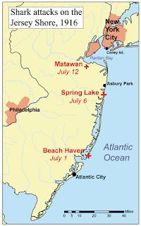 Recorrido Tiburón Jersey Shore 1916