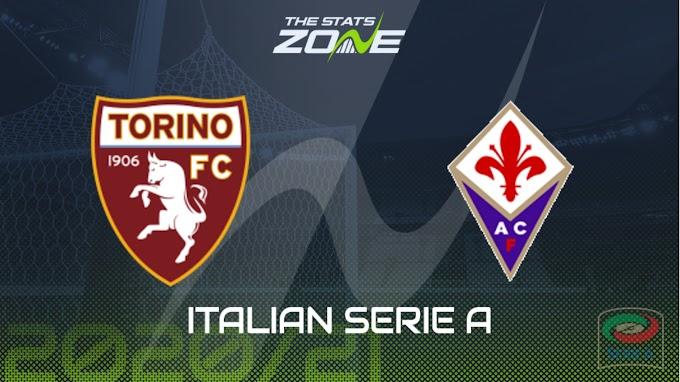 مشاهدة مباراة تورينو و فيورنتينا بث مباشر