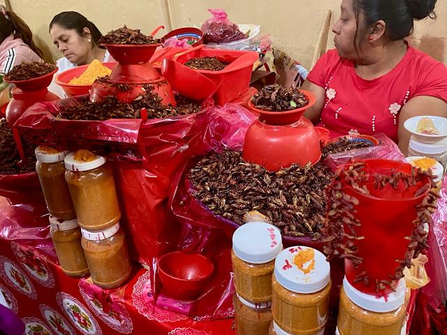 Chapulines / grasshoppers at Benito Juarez market, Oaxaca, Mexico