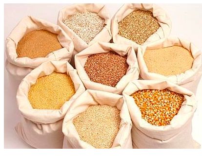 Global Grain Export - A successful Indian company that brings grains to all countries of the world