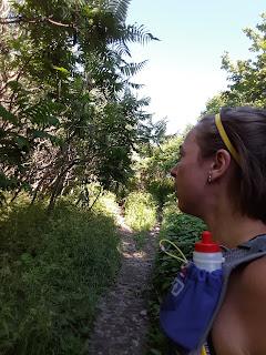 Coureuse, mont Royal, pente abrupte, arbres