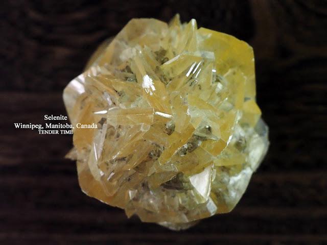 ジプサム 石膏 Selenite Winnipeg, Manitoba, Canada