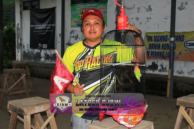 JAWARA LOVEBIRD M3