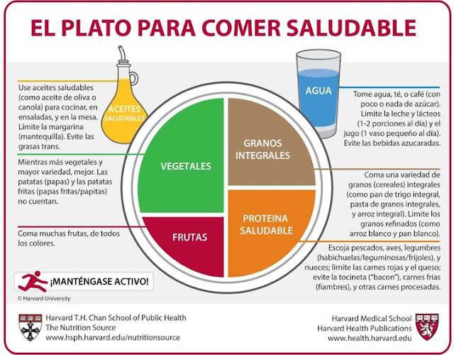 Cómo Comer Sano y Vegano | Plato Harvard