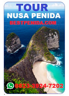 TOUR 1 HARI KE NUSA PENIDA, BEST FULL DAY TOUR, KELINGKING BEACH PACKAGE TOUR, ONE DAY TRIP TO NUSA PENIDA