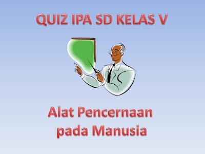 Quiz IPA SD Kelas V Alat Pencernaan pada Manusia