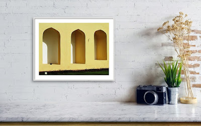 A Recently Sold Framed print of a Minimalist Photograph titled The Bird