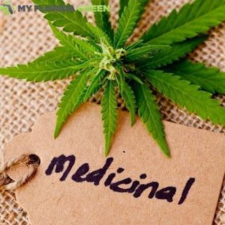 Medical Marijuana Card MerrittIsland
