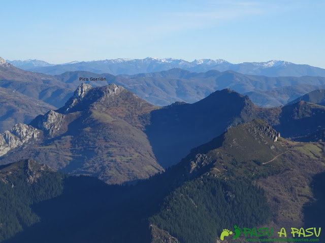Pico Gorrión desde el Lobiu