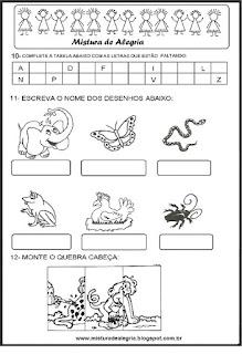Avaliação diagnóstica 1º ano alfabetização