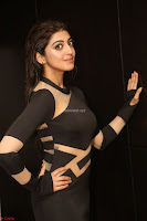Pranitha Subhash in a skin tight backless brown gown at 64th Jio Filmfare Awards South ~  Exclusive 147.JPG