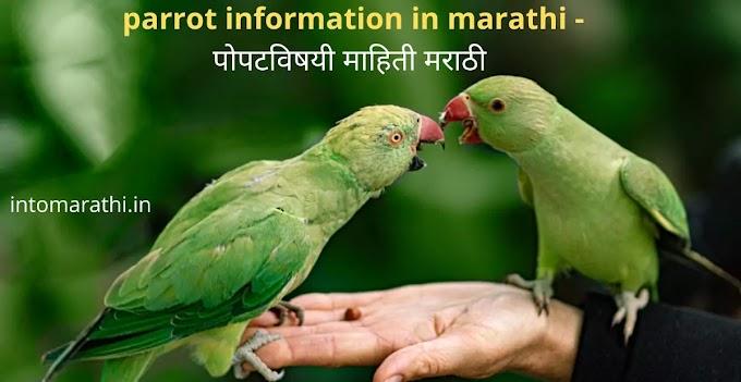 Parrot information in marathi - पोपटविषयी माहिती मराठी