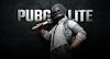 Free Download PUBG Lite for PC