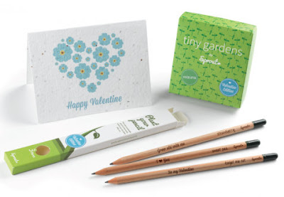 Plantable pencils and cards valentines gifts