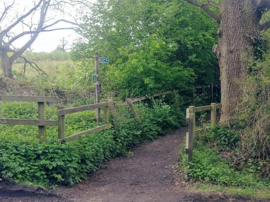 Shenley footpath 10 S of Radlett Lane