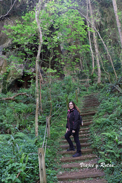 Cuevas de Andina, Asturias