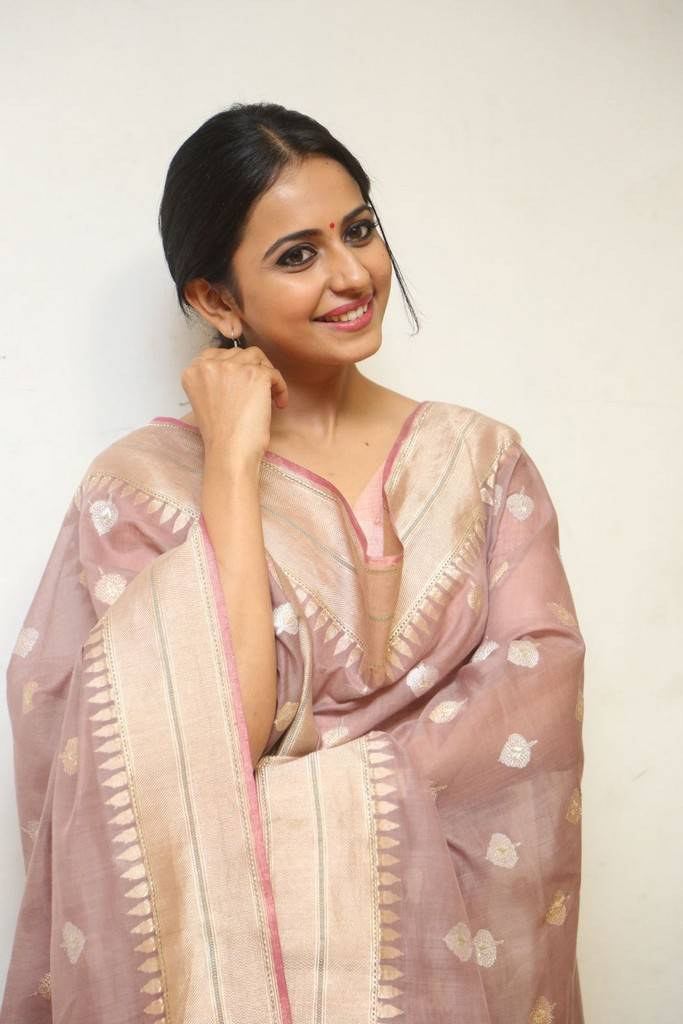 Rakul Preet Singh At Rarandoi Veduka Chuddam Interview