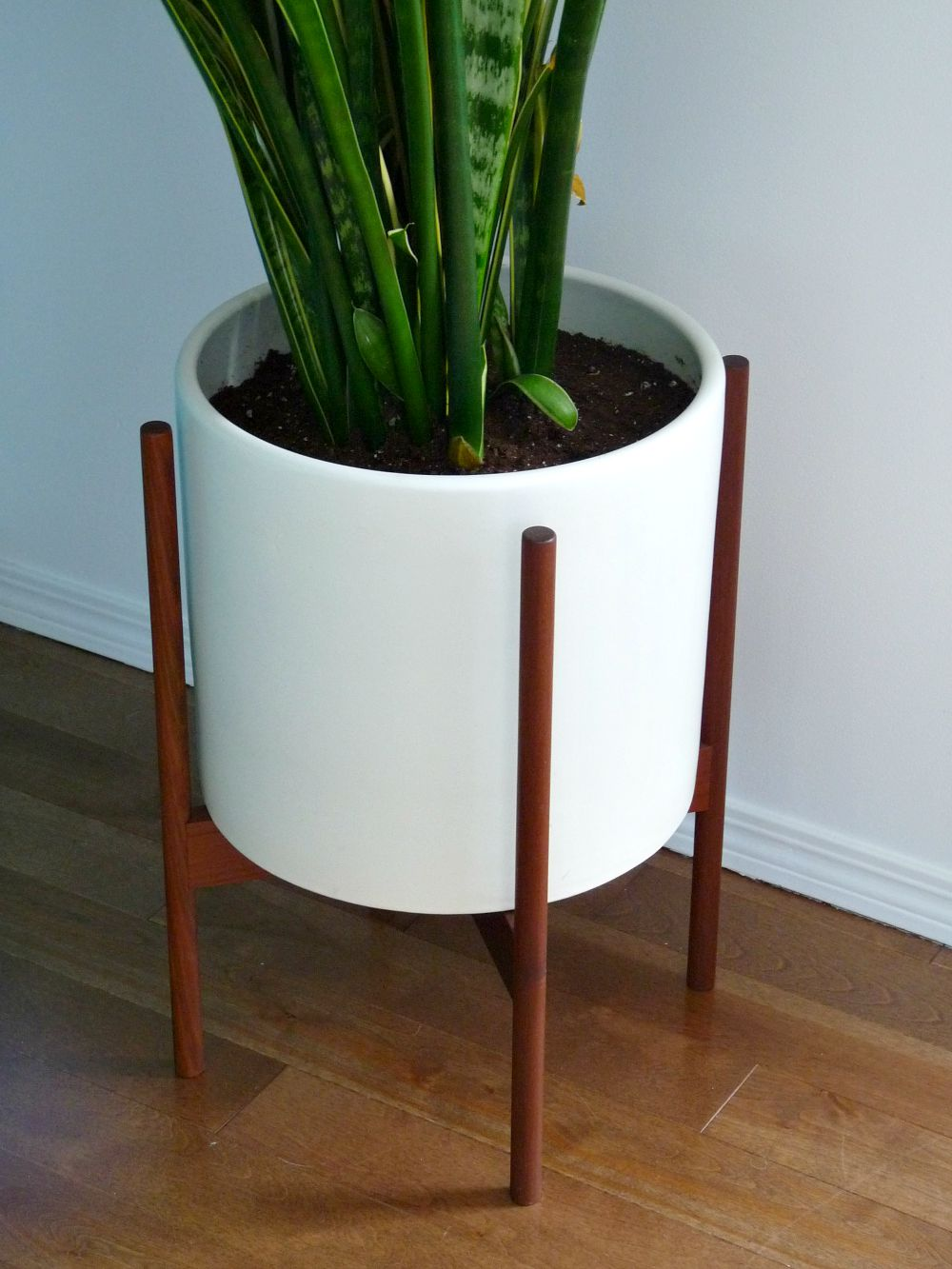 Modernica case study planter review
