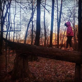 child walking on a fallen log