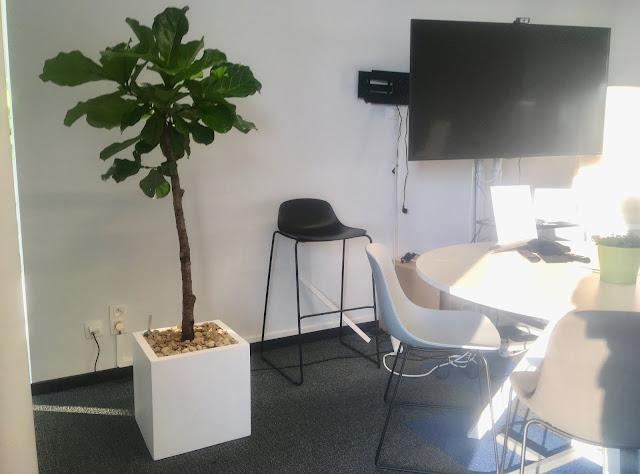 Planten voor kantoor huren prijzen op aanvraag in Limburg Vlaams-Brabant Brussel Antwerpen