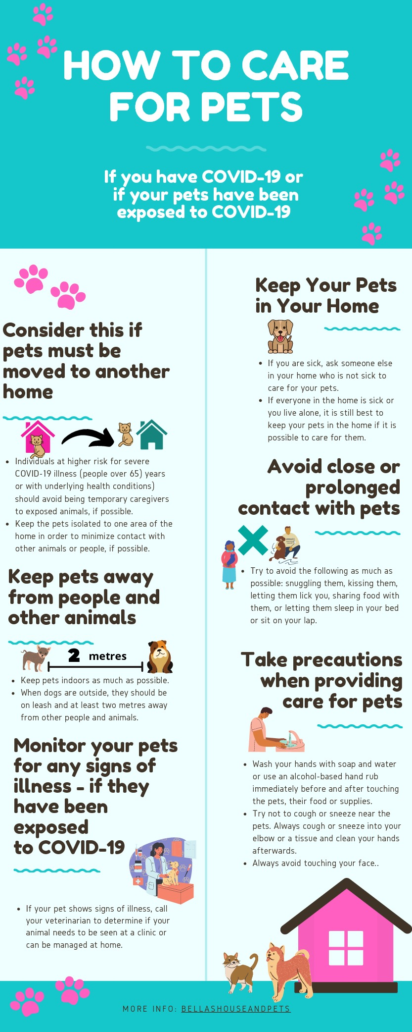 How to Care for Pets