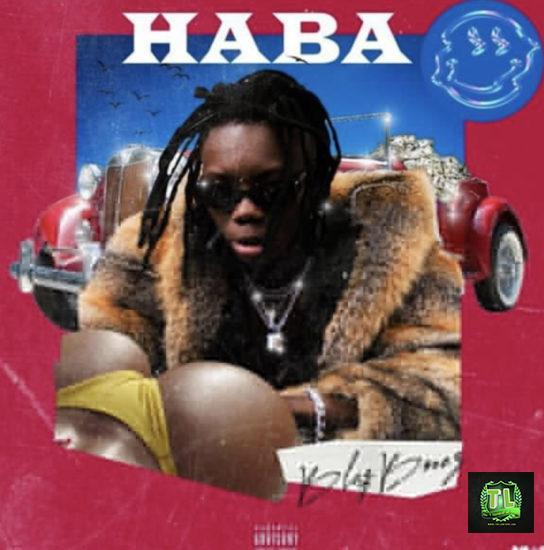 BlaqBonez Haba mp3 download teelamford