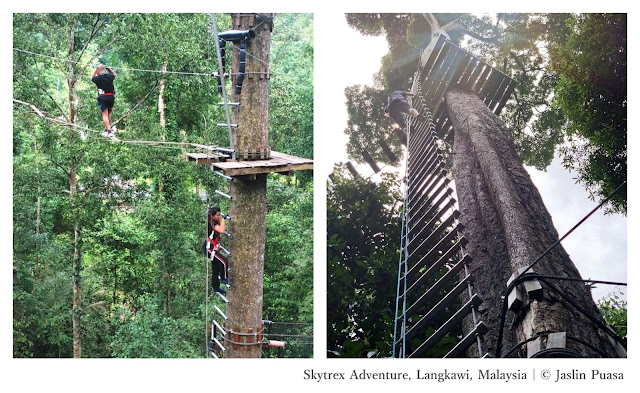 Conquering Southeast Asia: The Thrill-Seekers Edition - Skytrex Adventure Malaysia - Ramble and Wander