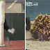 بالصور المتحركة: 10 تفاعلات كيميائية مذهلة لم يدرسوها لنا في المدرسة