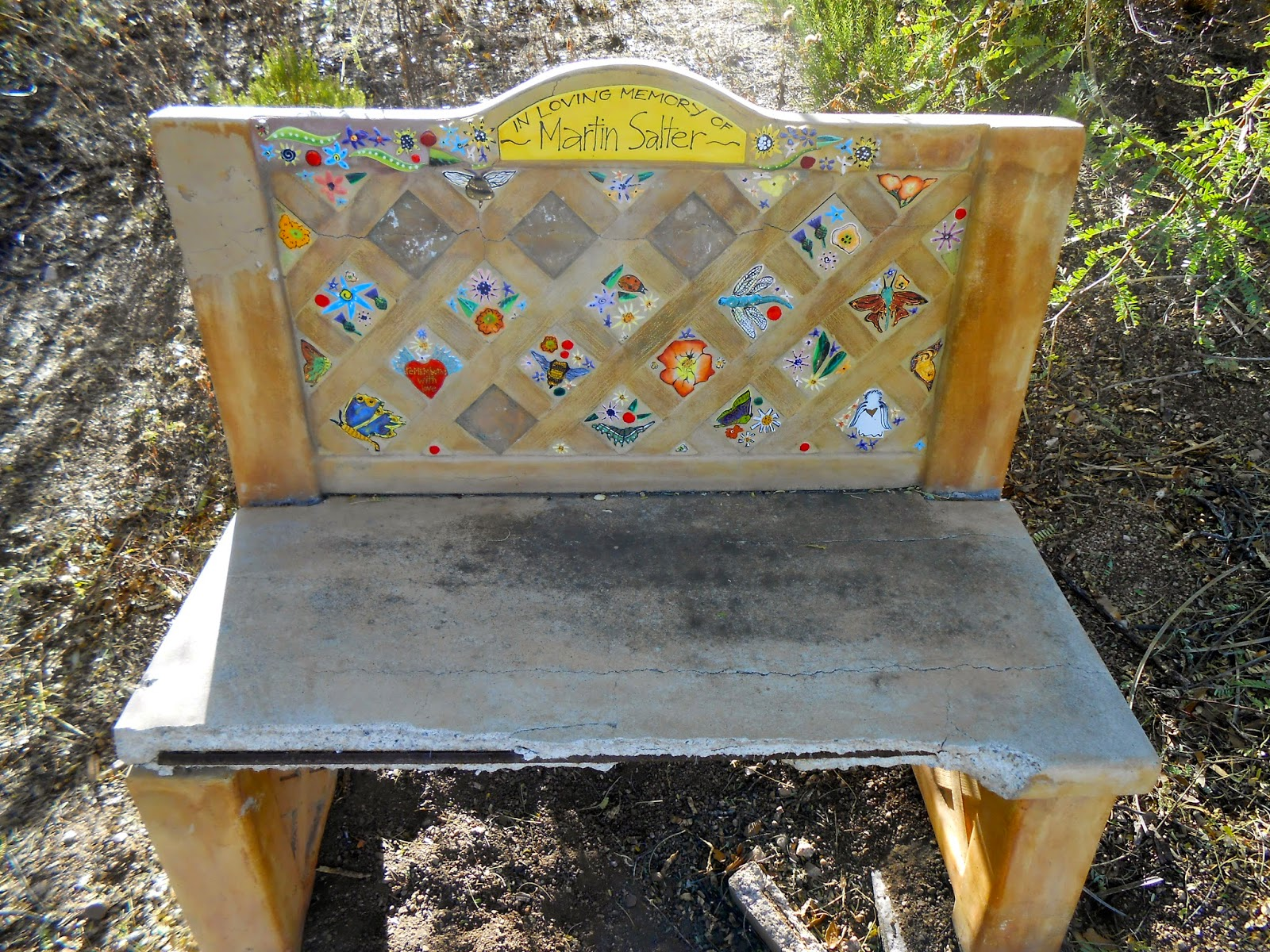 oracle arizona public library gardens bench